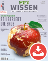 CHIP WISSEN 01/19 Download